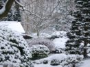 I v zimě vyžaduje zahrada péči. Jak se o zimní zahradu starat?